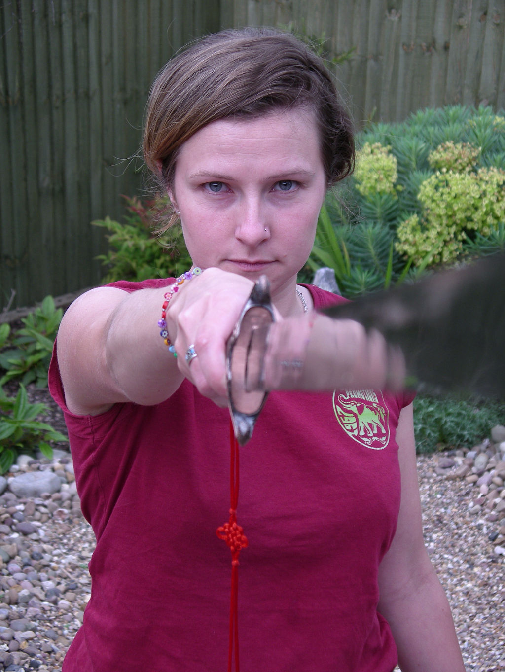 Sword Form - Amber Valley Tai Chi Chuan